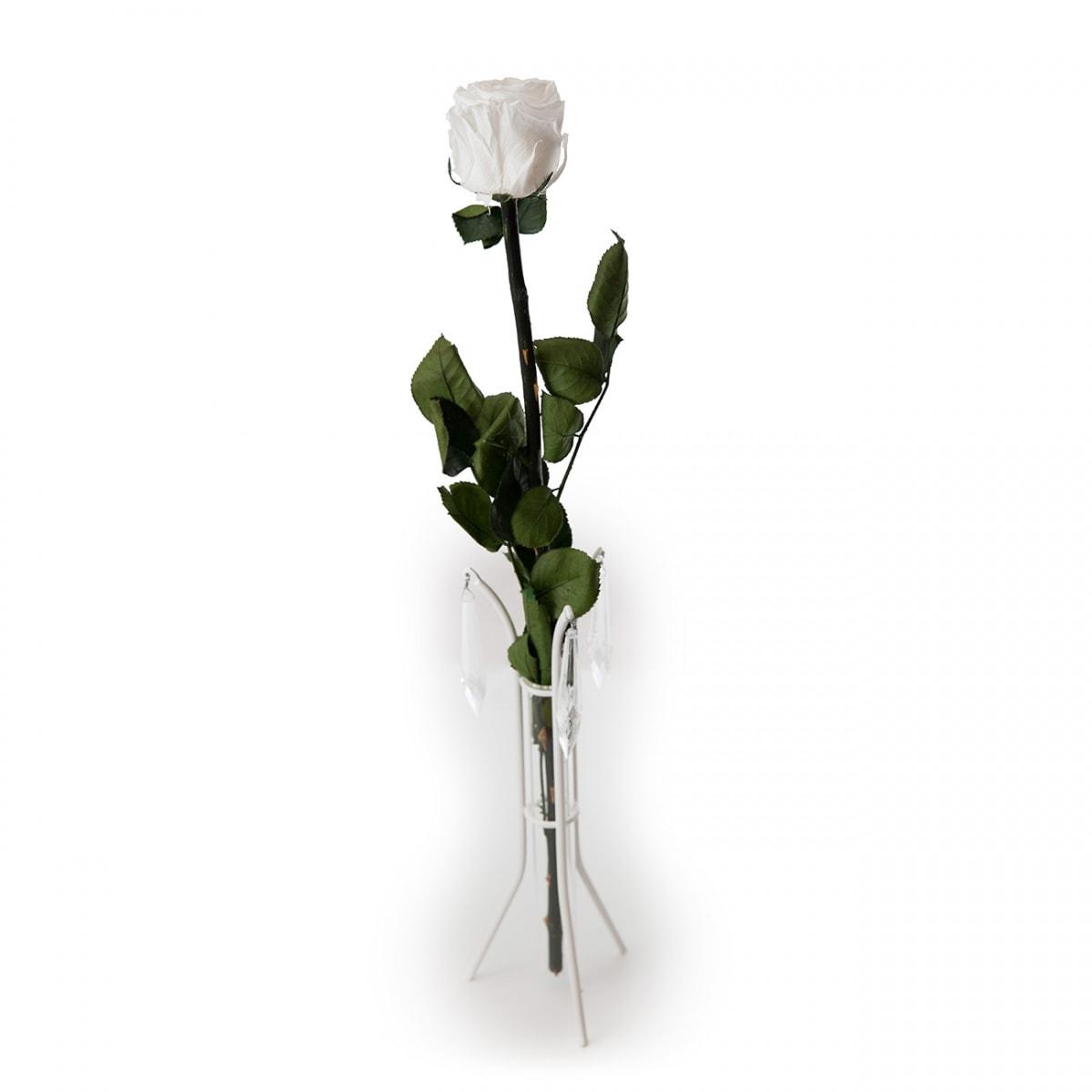 üksik roos king size